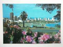Postcard Perth Skyline From King's Park PU 1978 My Ref  B11497 - Perth