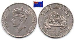 East Africa - 1 Shilling 1950 (High Grade) - Africa Orientale E Protettorato D'Uganda