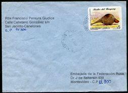 PREHISTORIC ANIMALS Animaux Préhistoriques Prähistorische Tiere DOEDICURUS Uruguay Fosiles Local Commercial Cover 1997 - Briefmarken