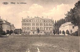 Ohey - Le Château (VPF, Edit Vve Toussaint...manque De Matière) - Ohey