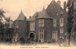 Jemeppe-sur-Meuse - Château D'Ordange (Jos. Massillon Edit) - Seraing