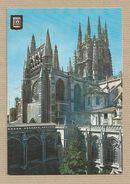 España Postales Burgos Catedral  Claustro  Spain Postcards - Burgos