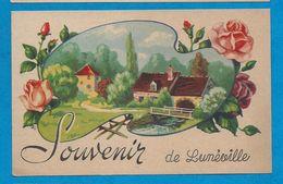Souvenir De LUNEVILLE - Luneville