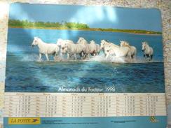 Almanach Du Facteur 1998 Chevaux De Camargue/ Poneys De Virginie  / Département De L'Aveyron - Calendriers