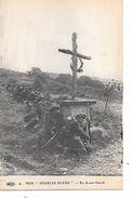 """MILITARIA (14-18) TRES BELLE CPA PATRIOTIQUE 191? (CHASSEURS ALPINS)(NOS DIABLES BLEUS) """"CROIX SUR LE FRONT"""" - Guerre 1914-18"""