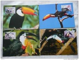 WWF Guyana Toucans  Riesendukan & Dotterdukan Oiseaux 2003 CM MK MC Maxi Maximum Card Carte Maxicard Maximumkarte - Maximum Cards