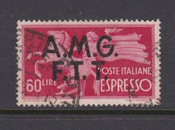 Trieste Allied Military Government Express Letter Stamps E 4 1947 Democratica 60 Lire Red  Used - 7. Trieste