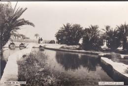 SAUDI ARABIA--RARE--water In Al-hasa--munistry Of Information--carte Photo--voir 2 Scans - Arabie Saoudite