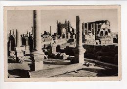 1 Cpa Carte Postale Ancienne -  LEPTIS MAGNA - VEDUTA D INSIEME DELLE TERME - Libia