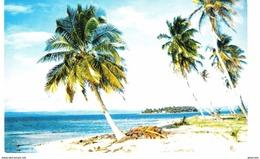 PANAMA - ON A SAN BLAS ISLAND - VIAGGIATA 1988 - (397) - Panama