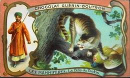 Chromo & Image - Chromo. Tour Doré - Chocolat Guérin-Boutron - Les Mammifères - Le Felis Du Tonkin - En TBE - Guerin Boutron