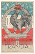 France 1918 Patriotic Picture Postcard - Heimat