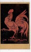 Le Coq Wallon   Marco Marcovici - Autres Illustrateurs