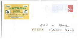 PAP REPIQUE LA SAUVAGINE à NEJAC  LOT ET GARONNE - PAP : Antwoord /Luquet
