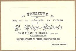 44 SAINT  ETIENNE  DE  MONTLUC   L.  VITIGE - LALANDE  PRIMEURS  FRUITS LEGUMES FLEURS CULTURE SPECIALE DE FRAISES - Saint Etienne De Montluc