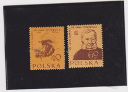 POLAND-POLEN-POLSKA 1956  HONEYBEES-BIENEN-ABEILLES Set 2val. MNH** - Honeybees