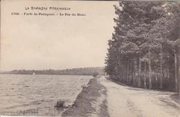 CPA Forêt De Paimpont - Le Pas Du Houx (29678) - Paimpont