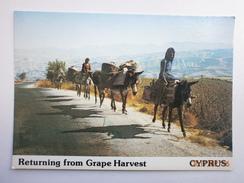 Postcard Returning From The Grape Harvest & Working Donkeys Cyprus My Ref B21524 - Vines