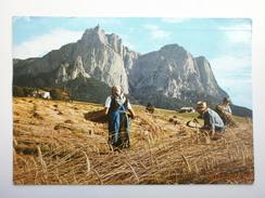 Postcard Harvesting Wheat ? Postally Used Italy 1976 Farming Interest My Ref B21525 - Cultivation