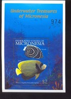 MICRONESIA    447 MINT NEVER HINGED SOUVENIR SHEET OF FISH-MARINE LIFE  #   541-4  ( - Fische