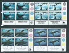 Tonga 1996 WWF Humpback Whale Set 4 In Marginal Blocks Of 4 From Base Of Sheet MNH - Tonga (1970-...)