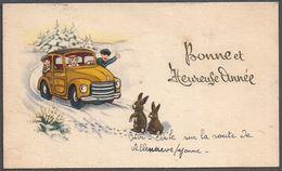 Carte De Voeux Petit Format Humoristique - Lapins - Auto - Famille - - Sonstige
