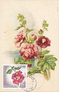 D30812 CARTE MAXIMUM CARD RR 1967 ALBANIA - ALTHAEA CP VINTAGE PRE 1907 ORIGINAL - Pflanzen Und Botanik