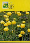 FINLANDE Carte  Maxi   1992 Fleurs - Sonstige