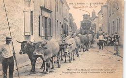 - 1572 - LE BOUPERE - Arrivée De La Machine Pour L'Exploitation Des Mines D'Antimoine De La Ramée - Attelage De Boeufs - Frankrijk