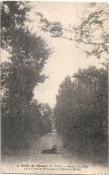 ----- 78 -----Forêt De Senart Route à La Fille De La Croix De L'Hermitage écrite TB - Andere Gemeenten
