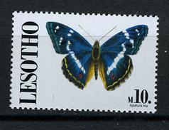 1991 - LESOTHO - Mi. Nr. 909 -  NH - (CW2427.48) - Lesotho (1966-...)