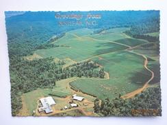 Postcard Nerada Tea Plantation Innisfail North Queensland Australia C 1981 Aerial View My Ref B21538 - Cultivation