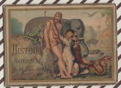7AJ218 CHROMO HISTOIRE NATURELLE (collé Sur Carton ) - Histoire