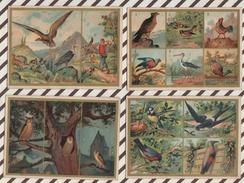 7AJ222 CHROMO HISTOIRE NATURELLE Lot De 8 LES OISEAUX - Histoire
