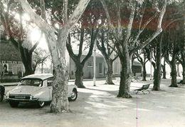 83.FORCALQUEIRET.La Place De L'eglise.n°349J.CPSM - Altri Comuni