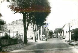 83.FORCALQUEIRET.entrée Du Pays.n°350J.CPSM - Altri Comuni