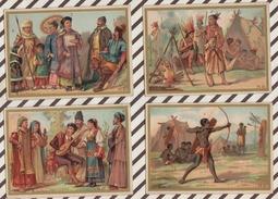7AJ230 CHROMO HISTOIRE NATURELLE  LES MAMMIFERES Lot De 7 - Histoire