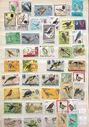 Birds  - Assortment Of Stamps, - Non Classés
