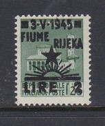 Venezia Giulia And Istria  Fiume Rijeka S 14 1945 2 Lira On 25c Green Mint Hinged - Occ. Yougoslave: Fiume