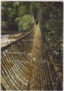 AFRIQUE,GABON,ancienne  Colonie Française,Ogooué,pont En Liane - Gabon
