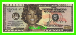 BILLETS , ONE MILLION DOLLARS - WHITNEY HOUSTON - UNITED STATES OF AMERICA - - Etats-Unis