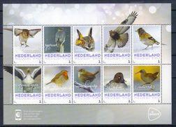 Niederlande Klb. 'Wintervögel, Eule Falke Usw.' / Netherlands Sh. 'Winter Birds, Owl Falcon Etc.' **/MNH 2017 - Vogels