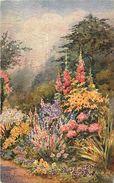 Themes Div -ref T923- Illustrateurs - Illustrateur - Raphael Tuck -oilette - Ellen Warrington -aquarelle -fleurs  - - Tuck, Raphael
