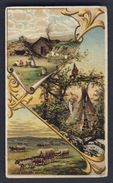 INDIAN TERRITORY & OKLAHOMA - ARBUCKLE COFFEE VICTORIAN TRADE CARD C.1892/ CHROMO No. 39 - Tee & Kaffee
