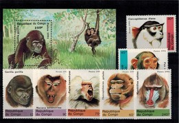 MDA-19072017-0013 MINT ¤ CONGO 1991 KOMPL. SET ¤ ANIMAUX - MAMMALS - APES - MONKEYS - Apen