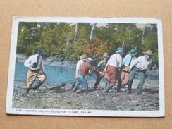 Hunters Hauling ALLIGATORS To Camp - Panama ( 184 B ) Anno 1930 ( Zie Foto Voor Details ) !! - Panama