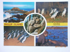 Postcard Phillip Island Cowes Multiview Nature's Paradise Koala And Penquin My Ref B21545 - Australia