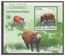 0308 Comores 2009 Varken Zwijn Pig Boar S/S MNH - Autres