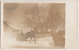 'Hochzeit In Gorozbei'  (?) - Pferdeschlitten / Schnee - Horse-sledge Snow - (Eastern Europe) - Huwelijken