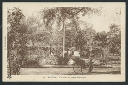 Saigon - Un Coin Du Jardin Botanique        Odg96 - Vietnam
